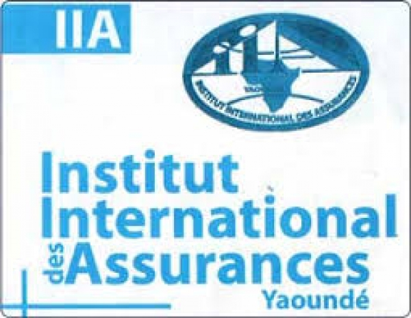 "CONCOURS INTERNATIONAL D'ENTRER AU CYCLE ""MASTER ASSURANCE"" A L'INSTITUT INTERNATIONAL DES ASSURANCE (IAA) DE YAOUNDE PROMOTION 2020-2022"
